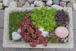Готовую клумбу из бетона можно заполнить разнообразными цветами и украсить декоративными камешками.