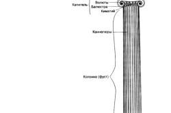 Структура каптели
